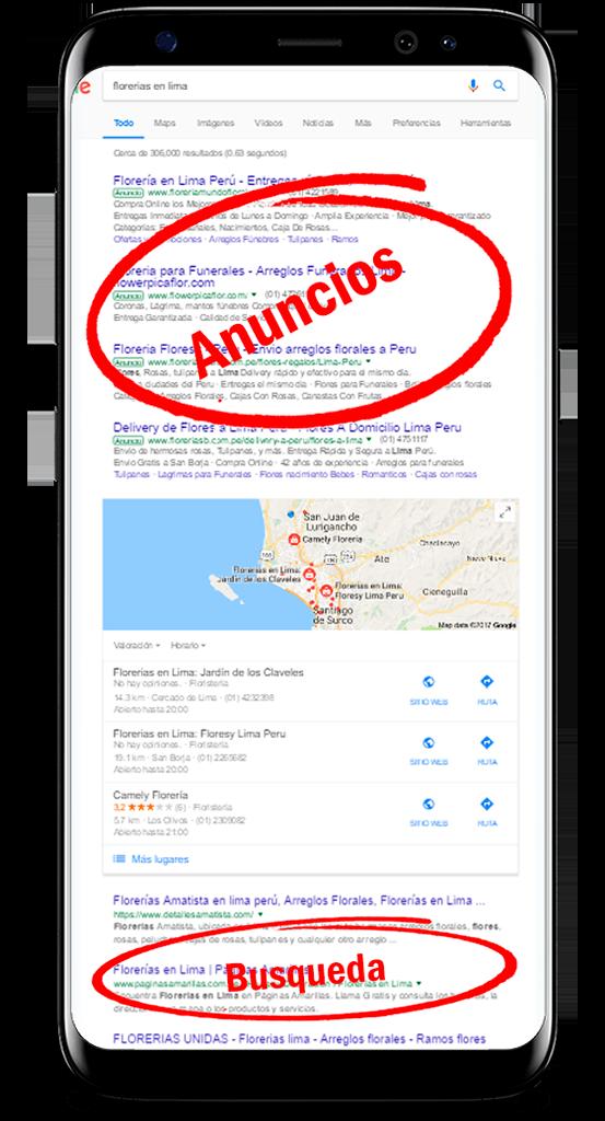 google adwords características diseño web rogersoto.com