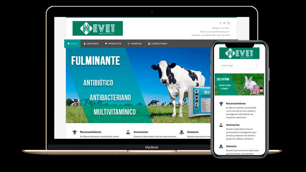 Diseño Web Empresarial para MEVET